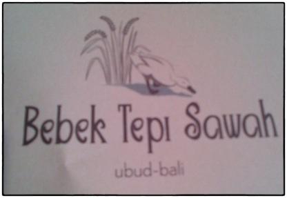 Bebek Tepi Sawah 05