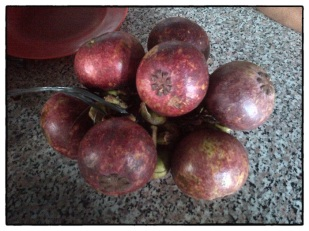 Purple Mangosteen 05