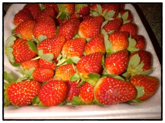 Strawberry 01
