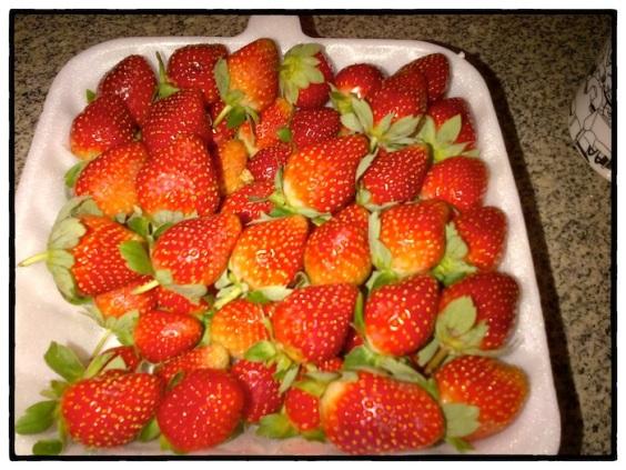 Strawberry 02