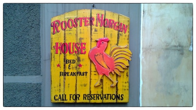 Rooster Morgan House